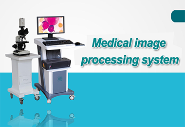 Medical image processing system
